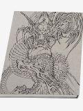 Ryuki Mysterious Dragons by Horiyoshi III (back-cover)
